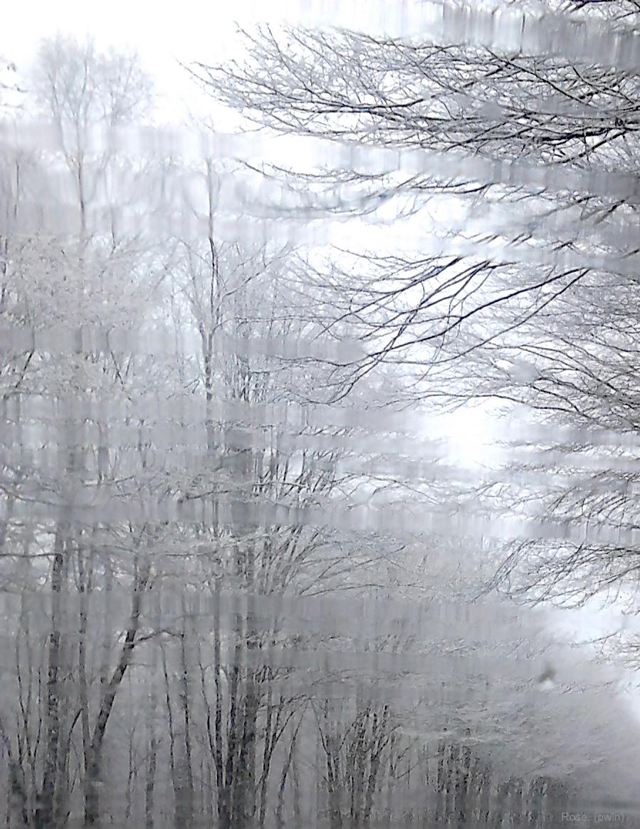 02 02 2015 neige 073xs