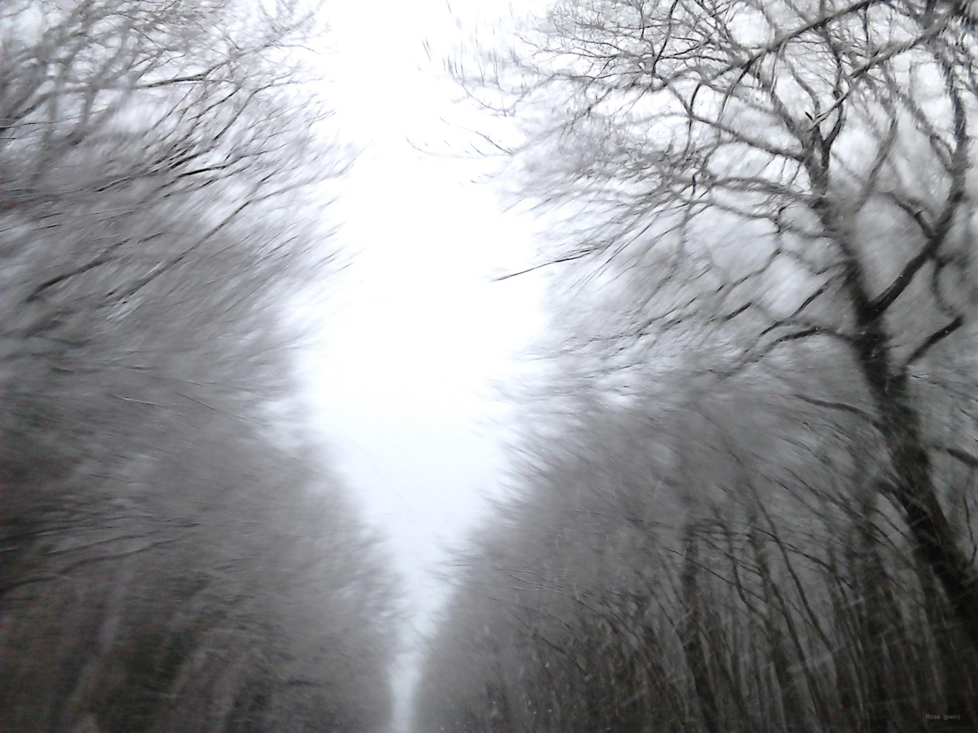 02 02 2015 neige 075xs