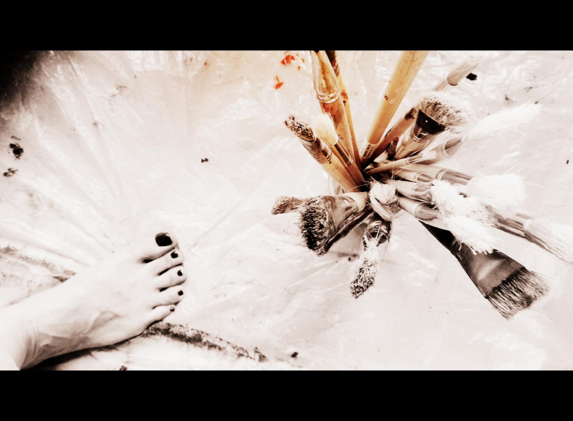 Rose 2012 007 72